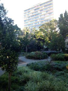 Garden in the City